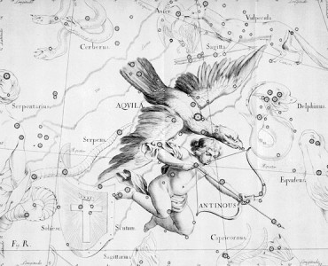The constellation of Aquila features the stars Altair, Alshain, Tarazed, Deneb el Okab, Bezek, Tseen Foo and Al Thalimain.